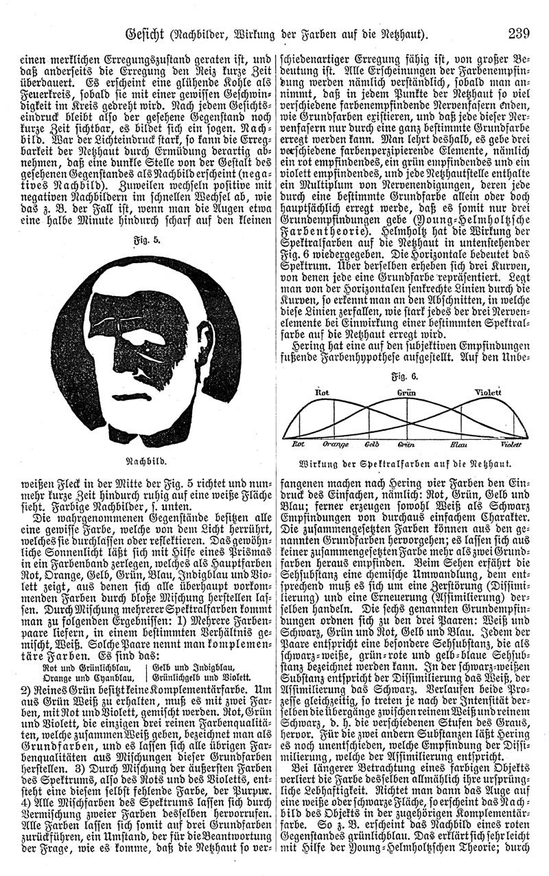 retro bib - Seite aus Meyers Konversationslexikon: Gesicht ...